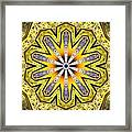 Shamanic Dreams Framed Print by Derek Gedney