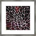 Shattered Windshield H A Framed Print