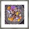 Shell Collecting Framed Print by Garry Gay