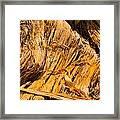 Shredded Bark Framed Print