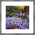Sidewalk Spring Scene Framed Print