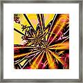 Silk Flower Framed Print