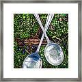 Silver Spoons  Framed Print
