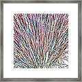 Simply Grass 2 Framed Print