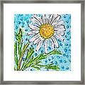 Single Summer Daisy Framed Print
