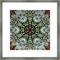 Sister Cactus Mandala Framed Print