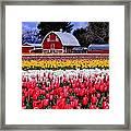 Skagit Valley Framed Print