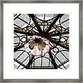 Skylight Blossom Framed Print