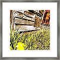 Slash Of Spring Framed Print