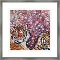 Sleeping Tigers Dream Such Sweet Dreams Kitties In Heaven Framed Print