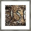 Small Dried Fishes Forming The Word Fish Framed Print