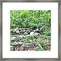 Smith Creek Downstream Of Anna Ruby Falls - 2 Framed Print