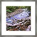 Smoky Mountain Stream Two Framed Print