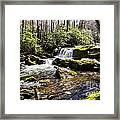 Smoky Mountain Waterfalls Framed Print