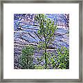 So Zion 2 Framed Print