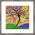Solar Tree Framed Print