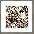 Soltice Di Amore Framed Print