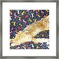 Sonny Cat On Sacred Cat Quilt Framed Print