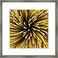 Spaghetti Noodles Framed Print by Joe Belanger