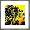Spanish Sunshine - Espana Framed Print