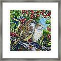 Sparrows On The Hawthorn Framed Print