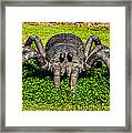 Spider Sculpture Framed Print