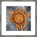 Split Sunflower Framed Print
