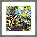 Spotted Trunkfish Framed Print