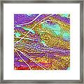 Spring Daydream Abstract Painting Framed Print