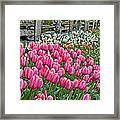 Spring Fence Landscape Art Prints Framed Print
