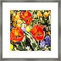 Spring Flowers No. 3 Framed Print