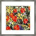 Spring Flowers No. 5 Framed Print