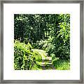 Spring Hikes Framed Print