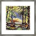 Spring In Woods Framed Print