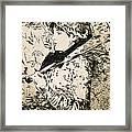 Spring   Jeanne Framed Print
