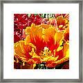 Spring Tulip Flowers Art Prints Yellow Red Tulip Framed Print