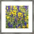 Spring Wildflower Bouquet  Framed Print