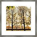 Springtime In Paris Framed Print