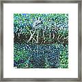 Springtime In Wekiva Framed Print