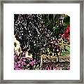 Springtime In Zebulon Center Framed Print