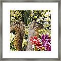 Squirrel In The Botanic Garden-dallas Arboretum V4 Framed Print
