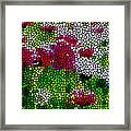Stained Glass Chrysanthemum Flowers Framed Print