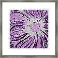 Stained Glass Flower With Purple Stripes Framed Print