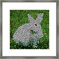 Stained Glass Rabbit Framed Print