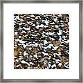 Starling Swarm Framed Print