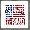 Stars No Stripes Framed Print