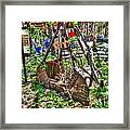 Steam Shovel Bucket Framed Print