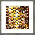 Steampunk - Apiary - The Hive Framed Print