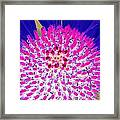 Stigma - Photopower 1078 Framed Print