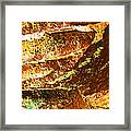 Stone Abstract 1 Framed Print